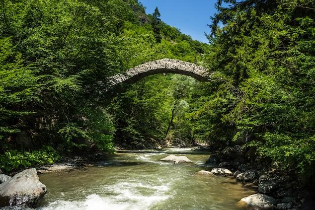 Ponte rainha de tamar