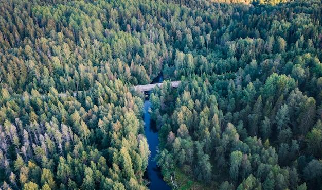 Ponte rodoviária sobre o rio em uma densa floresta de coníferas. vista aérea do drone