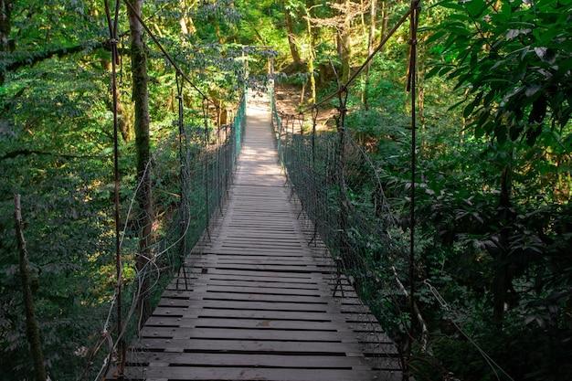 Ponte suspensa de madeira na floresta, selva.
