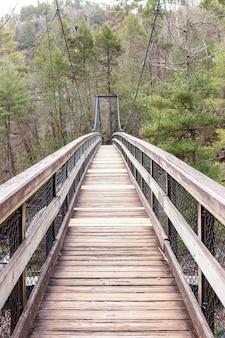 Ponte suspensa de madeira na floresta verde
