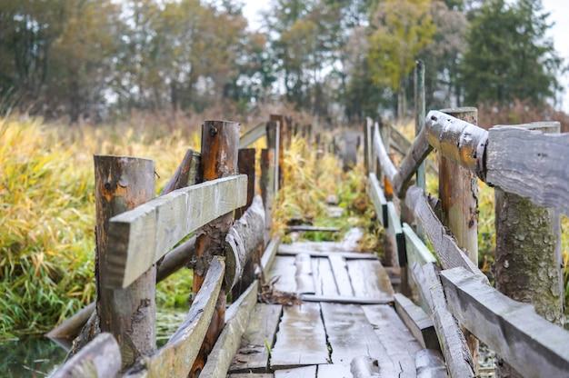 Ponte velha, de madeira, dilapidada através de um rio abandonado na floresta