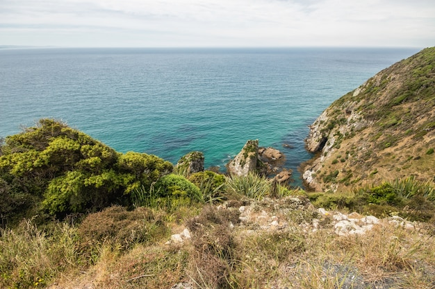 Ponto da pepita na ilha sul de nova zelândia