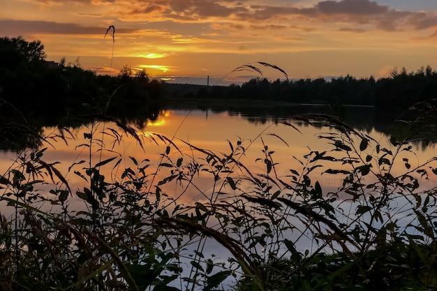 Pôr do sol colorido de verão no lago com nuvens refletidas na água e silhuetas de grama em primeiro plano