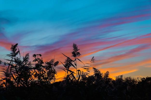Pôr do sol colorido e brilhante no mar com belas nuvens pôr do sol de outono céu rosa