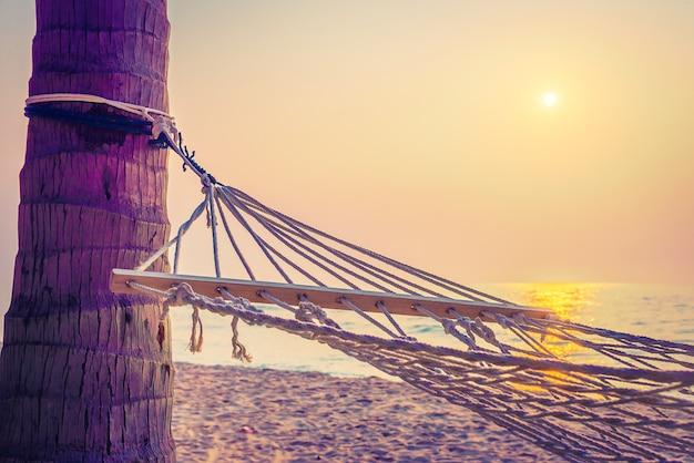 Por do sol da rede