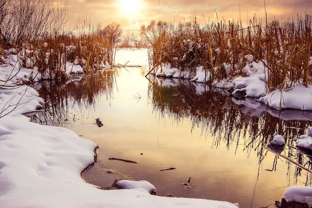 Pôr do sol de inverno no rio, paisagem de inverno com rio e juncos