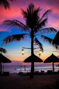 Pôr do sol-de-rosa e vermelho azul sobre a praia do mar com a silhueta de palmeira