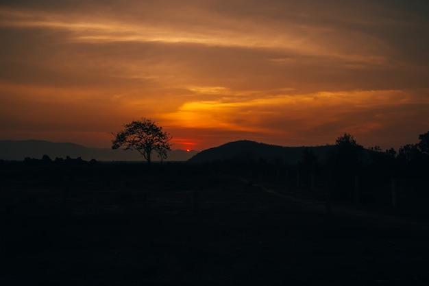 Pôr do sol de verão laranja