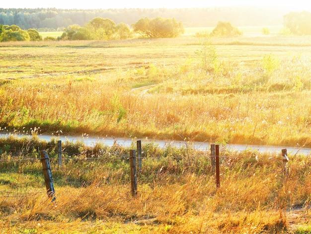 Pôr do sol dramático no fundo do prado da fazenda