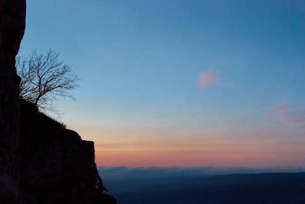 Pôr do sol e árvore acima do mar de nuvens com céu azul
