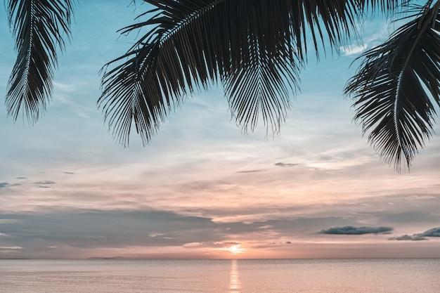 Pôr do sol e palmas das mãos - fundo da natureza.