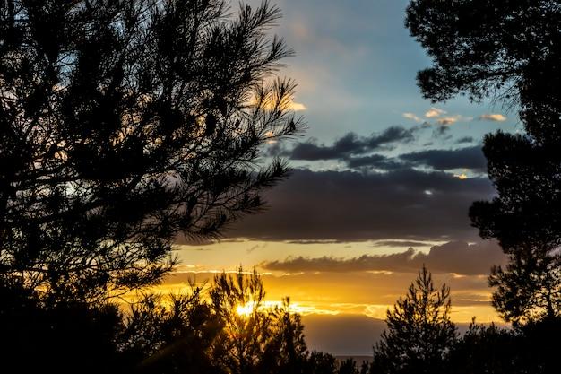 Pôr do sol em um dia com nuvens e raios de sol entre os pinheiros na montanha.