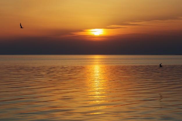 Pôr do sol lindo de verão no lago