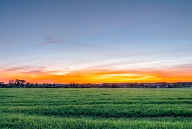 Pôr do sol lindo de verão sobre um campo rural