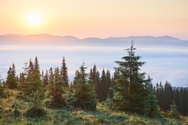 Pôr do sol na paisagem de montanhas. céu dramático. cárpatos da ucrânia, europa.