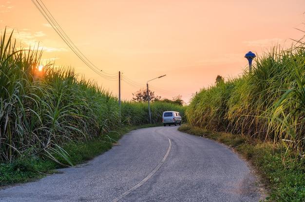 Pôr do sol na plantação de cana-de-açúcar com van dirigindo na curva da estrada de asfalto