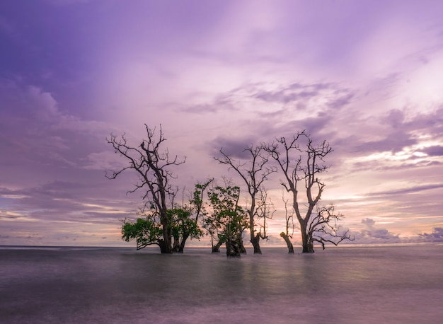Pôr do sol na praia de kastela, ternate, indonésia