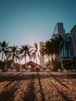 Pôr do sol na praia de miami com palmeiras