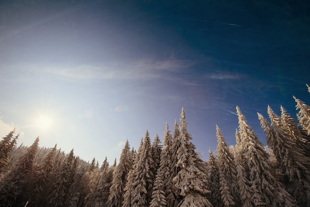 Pôr do sol nas montanhas de neve do inverno