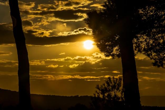 Pôr do sol nas montanhas entre os pinheiros em um dia com nuvens.