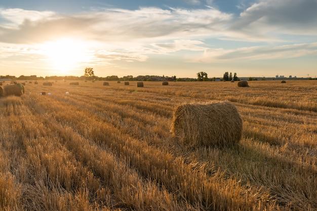 Pôr do sol no campo com palheiro