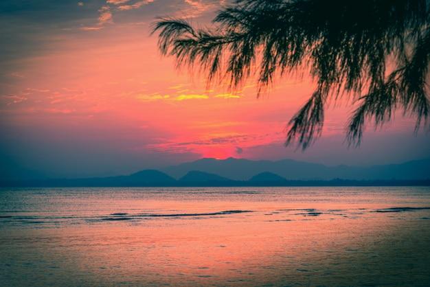 Por do sol no céu dramático sobre a montanha e o mar com árvore da folha. tom vintage.