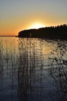 Pôr do sol no lago, silhuetas de árvores no fundo do pôr do sol no lago