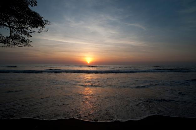 Pôr do sol sobre o oceano calmo na costa rica com galhos de árvores no lado esquerdo do quadro - tons suaves