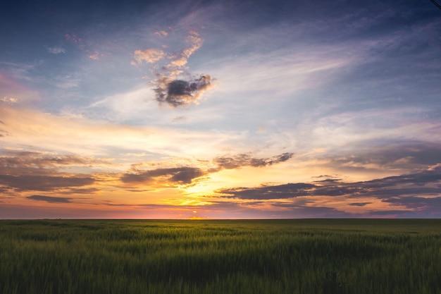 Pôr do sol sobre um campo gramado e céu com nuvens pitorescas