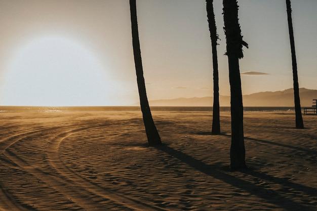 Pôr do sol sobre uma praia na califórnia