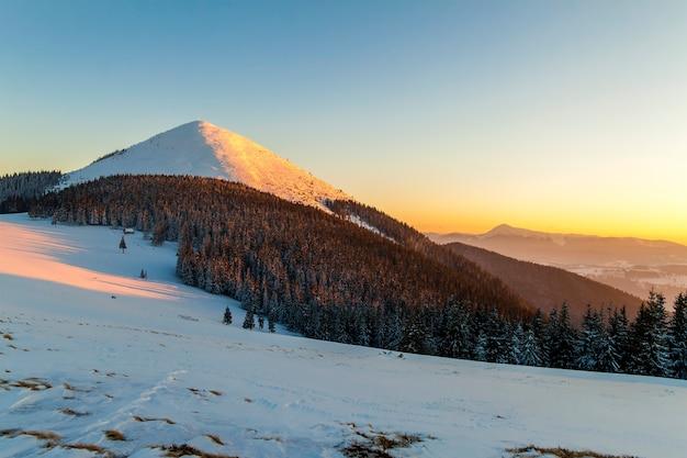 Pôr do sol suave nas montanhas dos cárpatos cobertas de neve de inverno