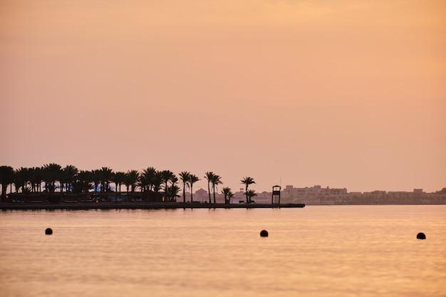 Pôr do sol suave sobre a superfície do mar com palmeiras distantes.