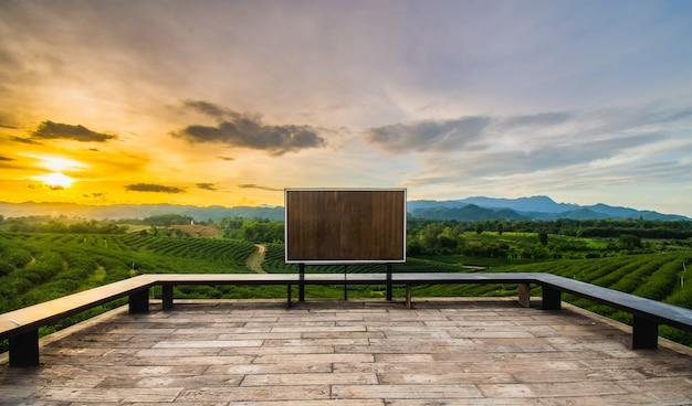 Pores do sol bonitos na plantação de chá asiática