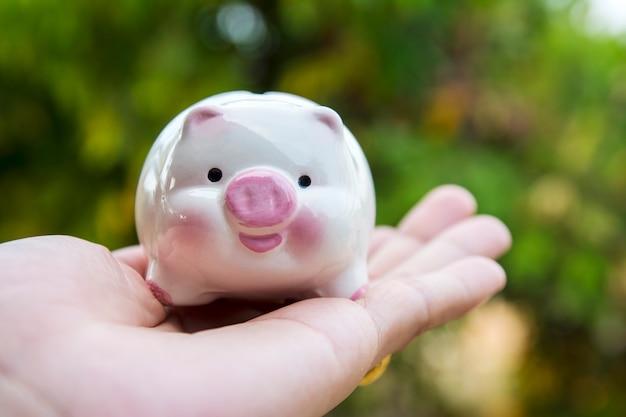Porquinho economizar dinheiro conceito, cofrinho na natureza