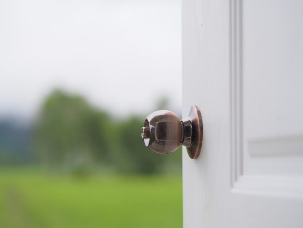 Porta aberta abrindo a natureza de paisagem de visão de porta