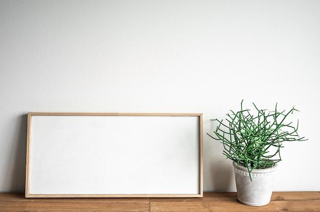 Porta-retrato em branco com planta euphorbia tirucalli linn.