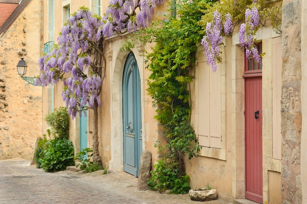 Portas francesas antigas de madeira com glicínias escaladas na parede paris