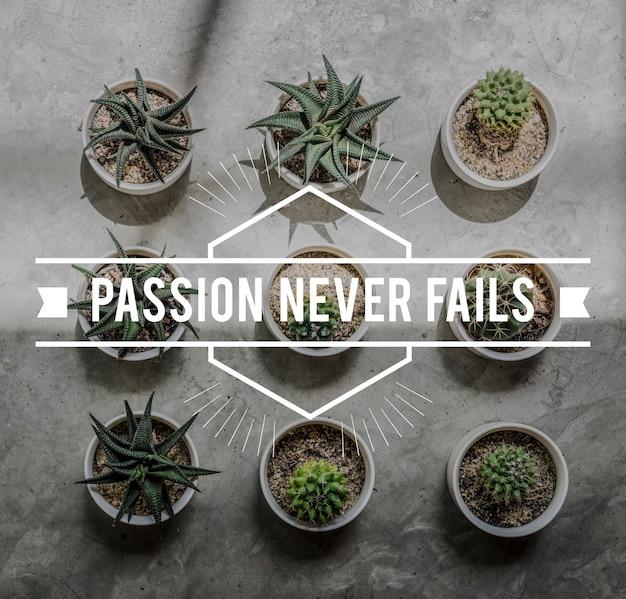 Positividade quebre a paixão nunca falhe momento