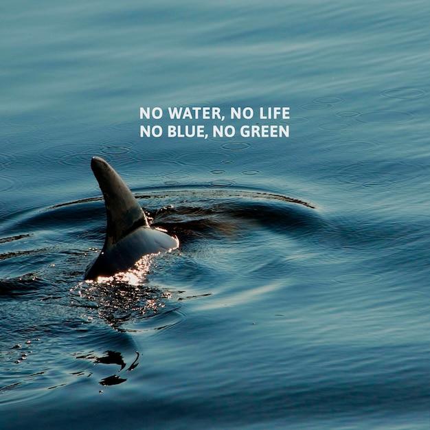 Postagem de conscientização sobre poluição do oceano por plástico