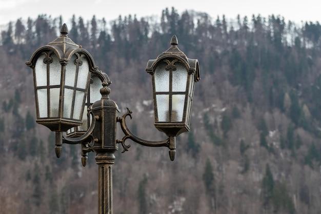 Poste de luz vintage ao ar livre com filiais no fundo