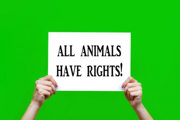 Pôster branco com um slogan todos os animais têm direitos em mãos femininas isoladas em um fundo verde
