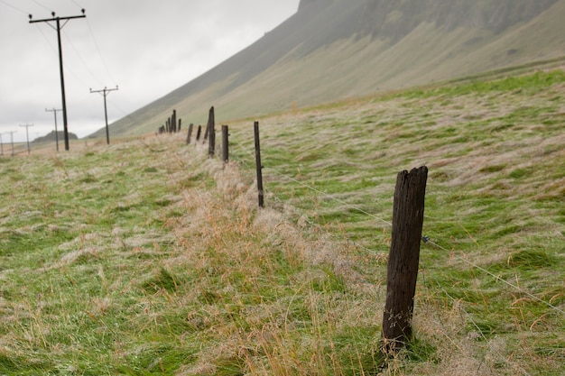 Postes de telefone e postos de arame farpado desaparecendo sobre a colina em um pasto