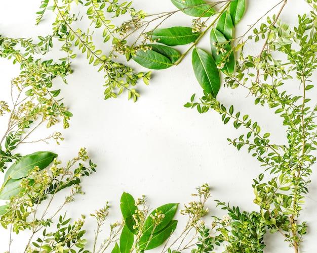 Postura plana com plantas e galhos de árvores verdes