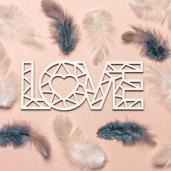 Postura plana criativa da palavra amor sobre fundo de cor suave com penas naturais.