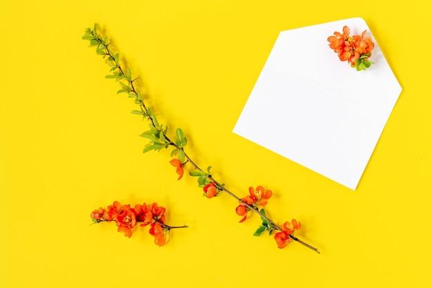 Postura plana criativa de mock up de quadro em branco e pétalas de flores de árvore de marmelo em fundo amarelo com espaço de cópia no estilo mínimo, modelo para letras, texto ou seu projeto.