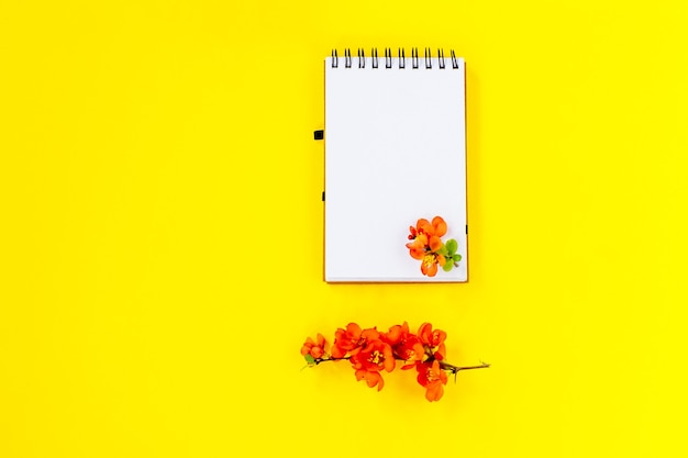 Postura plana criativa de simulação de quadro de bloco de notas espiral em branco e pétalas de flores de árvore de marmelo em fundo amarelo com espaço de cópia em estilo mínimo, modelo para letras, texto ou seu projeto.
