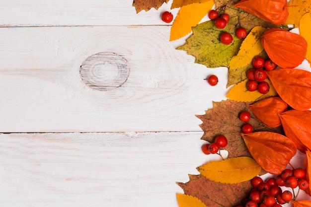 Postura plana da composição de outono em fundo branco de madeira com espaço de cópia, vista superior. fechar-se