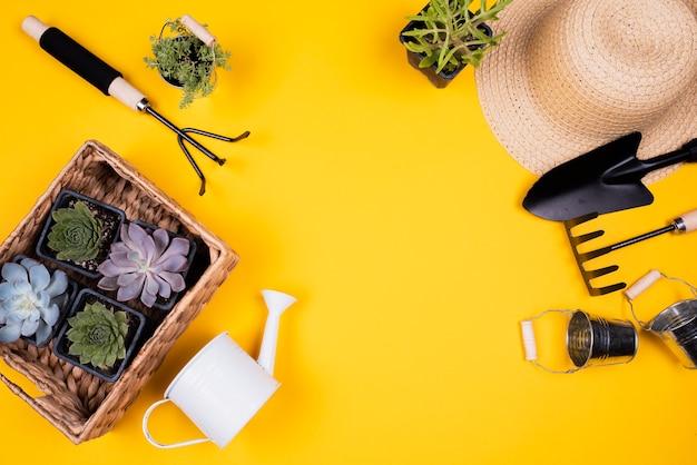 Postura plana de ferramentas de jardinagem e cesta com plantas