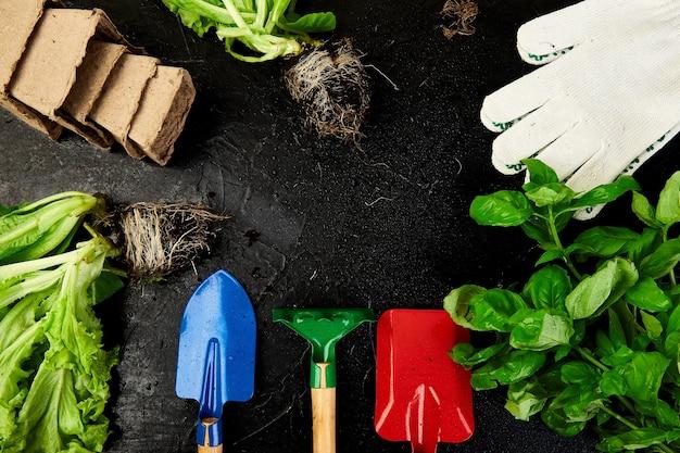 Postura plana de ferramentas de jardinagem, manjericão, vaso de flores ecológico, solo em fundo preto.
