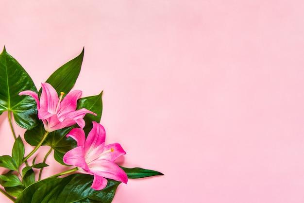 Postura plana de flores lilium e folhas verdes em fundo rosa. copie o espaço.